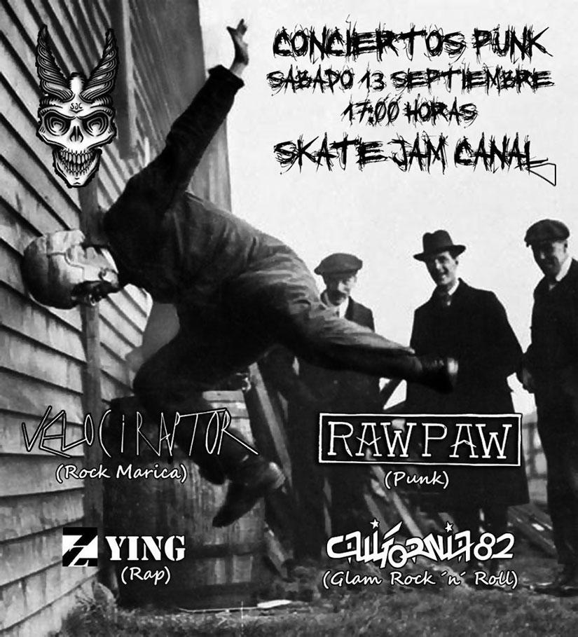 Musica Skate Jam Canal 2014